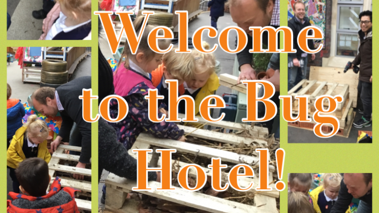 Nursery Class build a Bug Hotel!