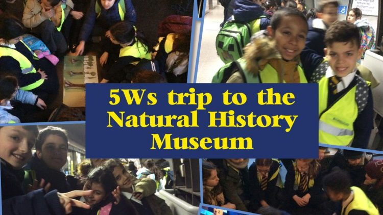5W's trip to the Natural History Museum