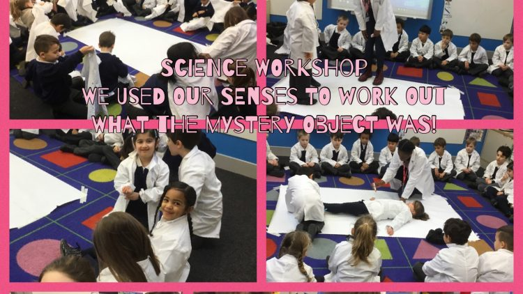 Science Workshop