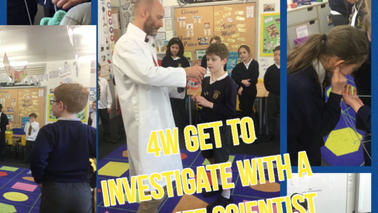 4W have fun with a Scientist!