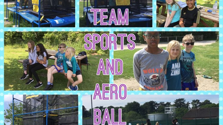 Team Sports and Aeroball!