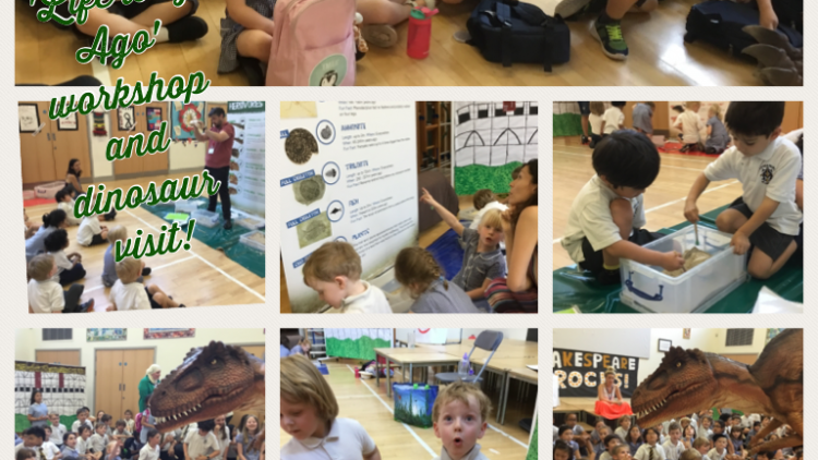 Nursery class enjoy the 'Life long Ago' workshop and dinosaur visit!