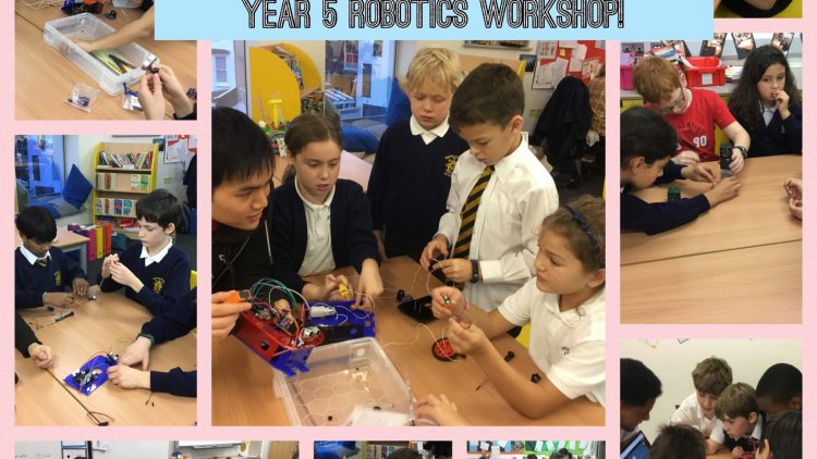 Year 5 Robotics Workshop