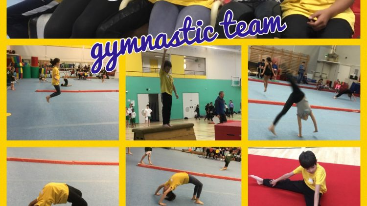 Emmanuel's gymnastics team