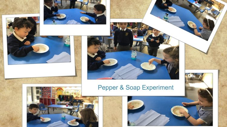 Pepper and Soap Experiment